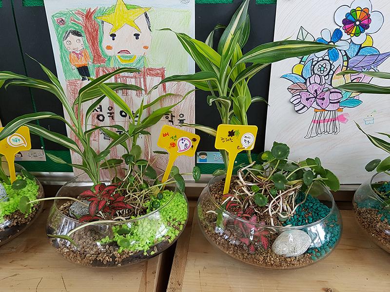 수생식물정원 만들기